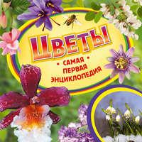 Ирина Рысакова - Цветы
