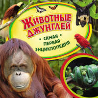 Ирина Травина - Животные джунглей