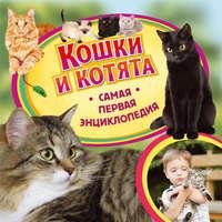 Ирина Травина - Кошки и котята