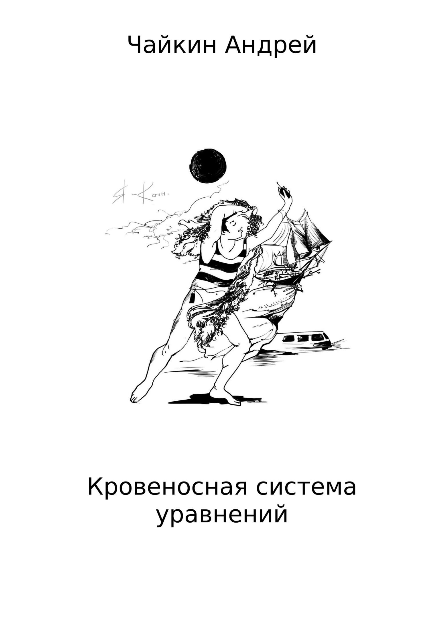 Андрей Владимирович Чайкин. Кровеносная система уравнений