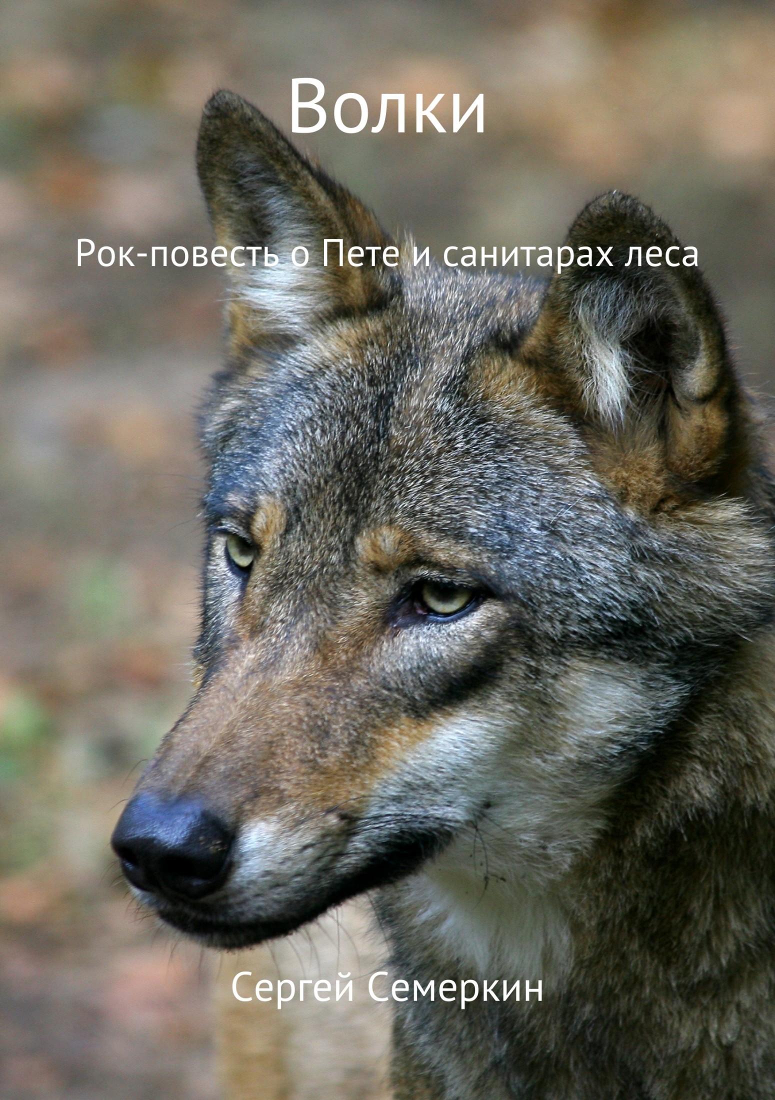 Сергей Владимирович Семеркин. Волки