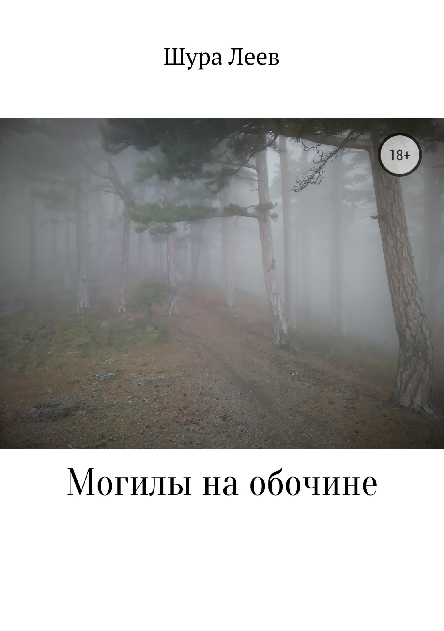 Шура Леев. Могилы на обочине
