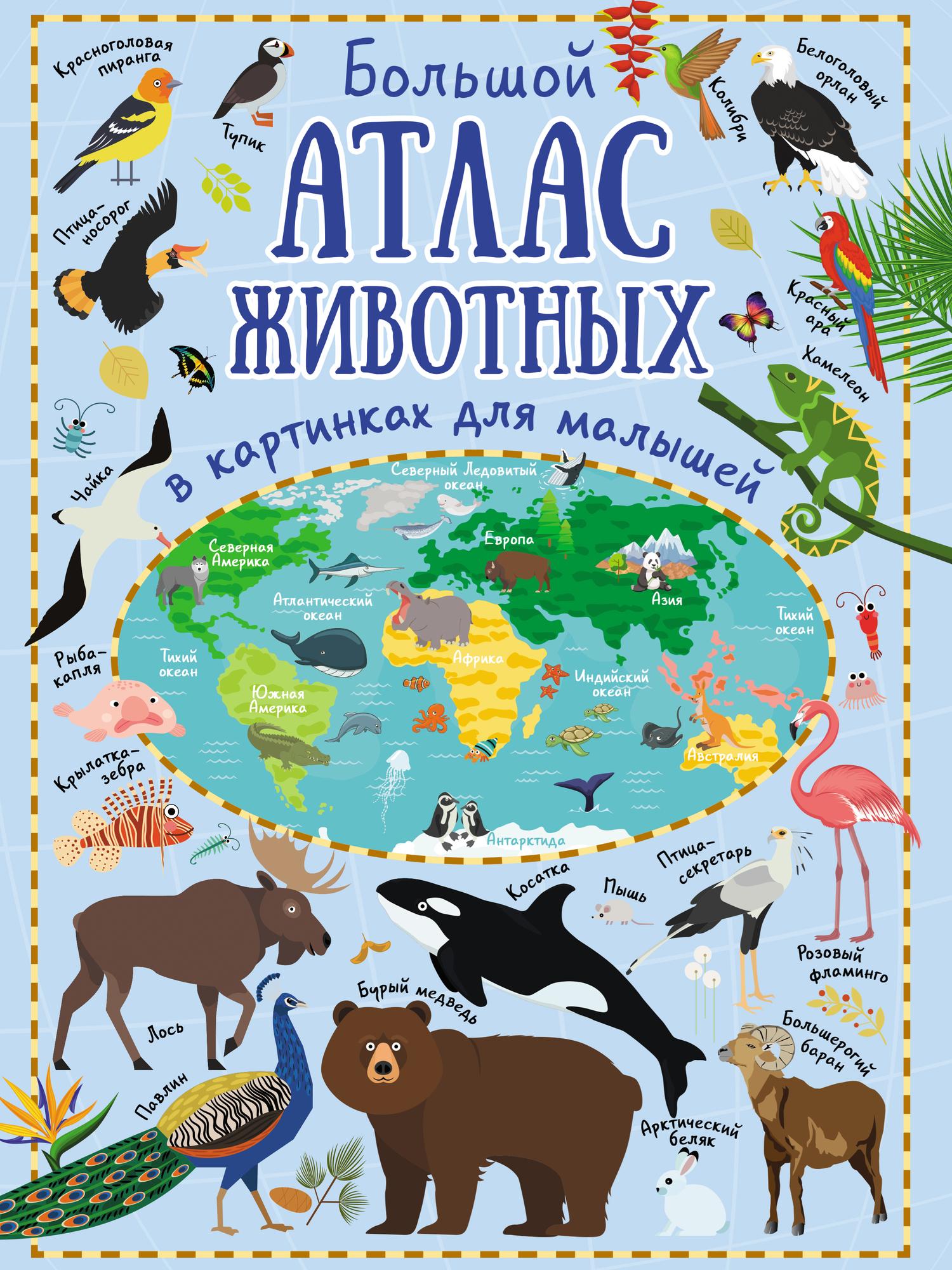 Ю. И. Дорошенко. Большой атлас животных в картинках для малышей
