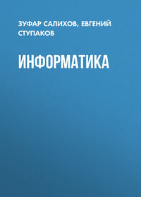 Евгений Ступаков - Информатика