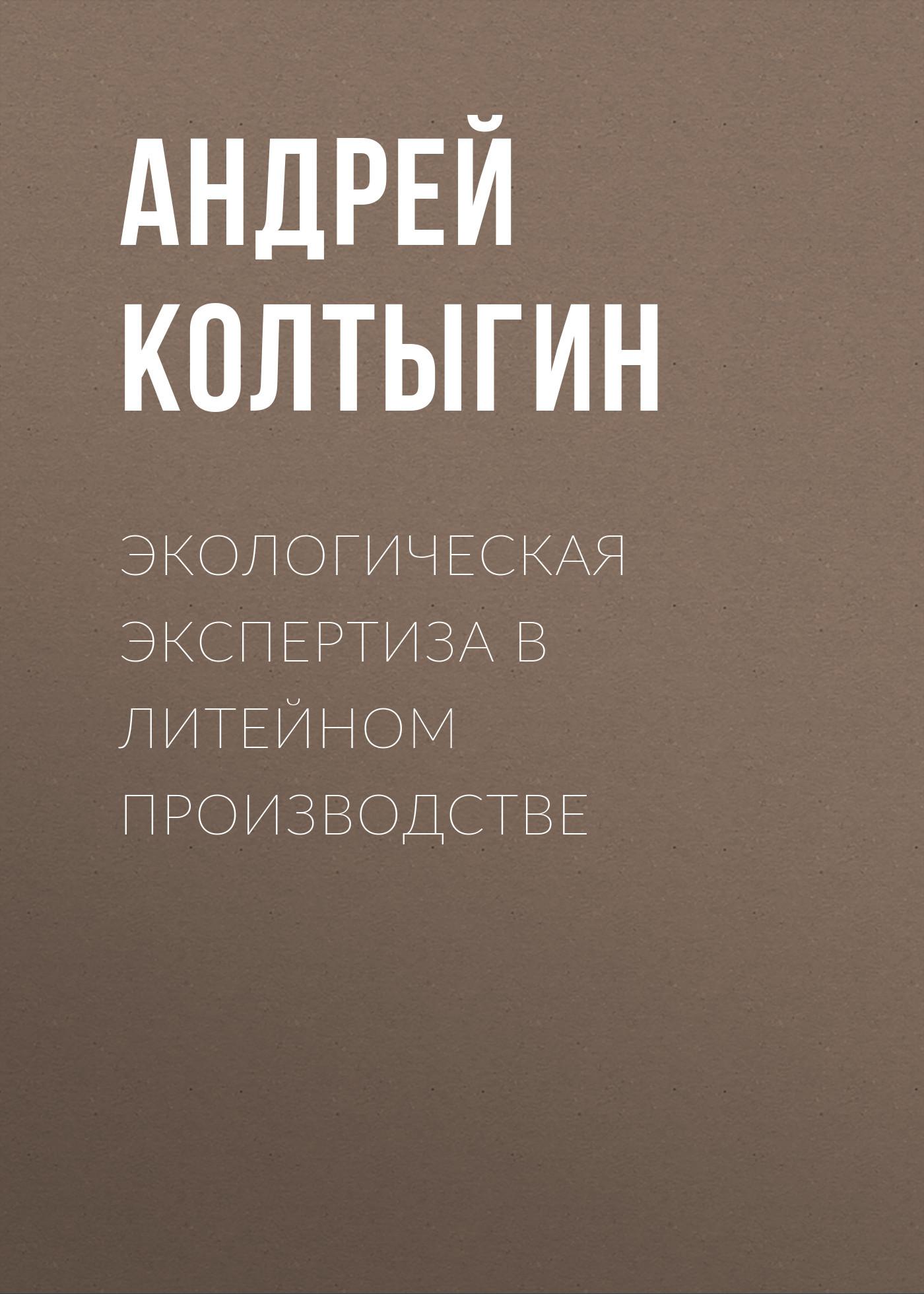 Андрей Колтыгин Экологическая экспертиза в литейном производстве