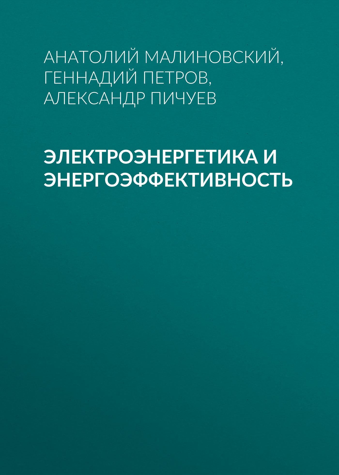 Анатолий Малиновский. Электроэнергетика и энергоэффективность