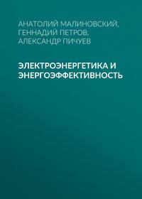 Анатолий Малиновский - Электроэнергетика и энергоэффективность