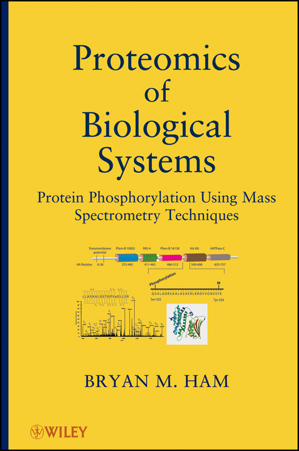 Bryan Ham M. Proteomics of Biological Systems. Protein Phosphorylation Using Mass Spectrometry Techniques child l jack reacher never go back a novel dell mass marke tie in edition