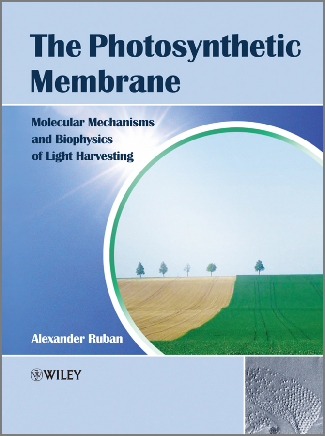 Alexander Ruban V. The Photosynthetic Membrane. Molecular Mechanisms and Biophysics of Light Harvesting a light in the window