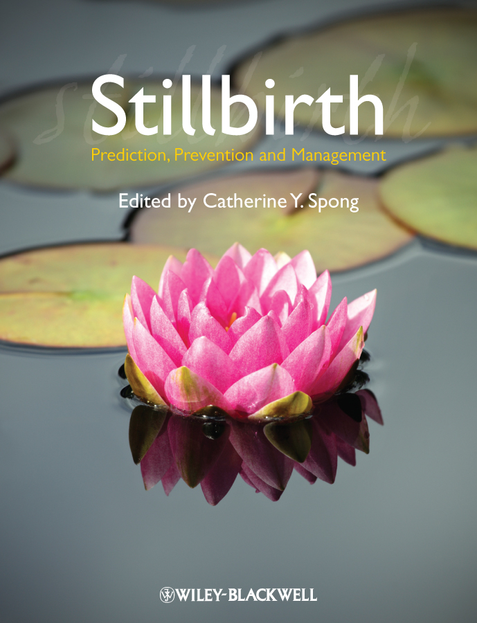 Catherine Spong Y. Stillbirth. Prediction, Prevention and Management ISBN: 9781444398014 gary cokins activity based cost management an executive s guide