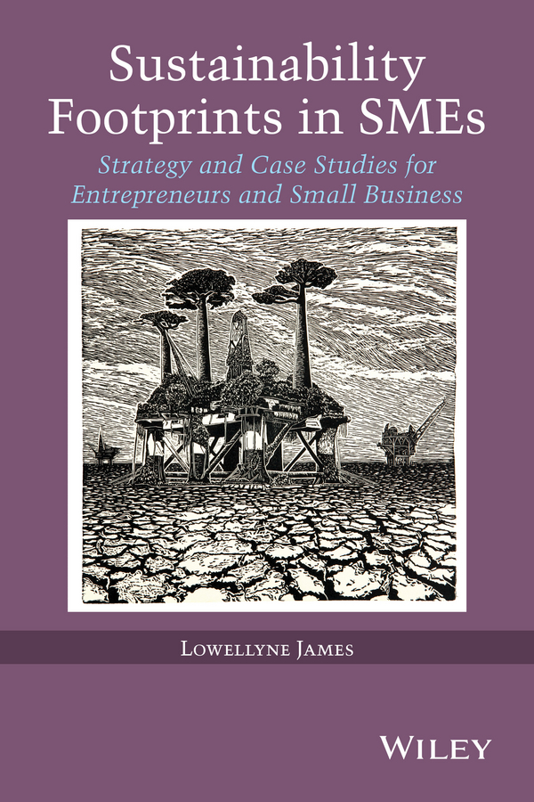 Lowellyne James Sustainability Footprints in SMEs. Strategy and Case Studies for Entrepreneurs and Small Business applied decision analysis for environmental remediation restoration and sustainability projects