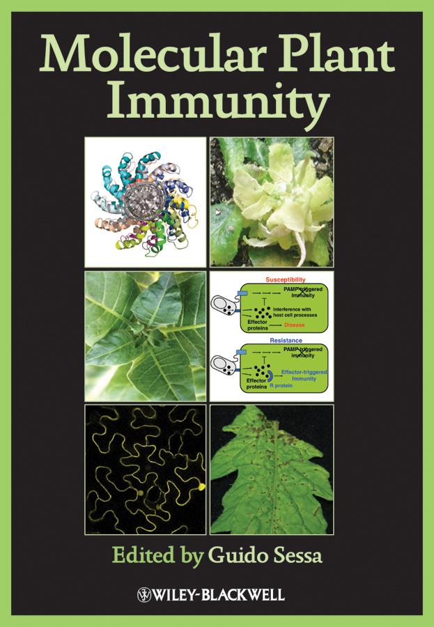 Guido Sessa Molecular Plant Immunity molecular basis of drought tolerance in helianthus annus