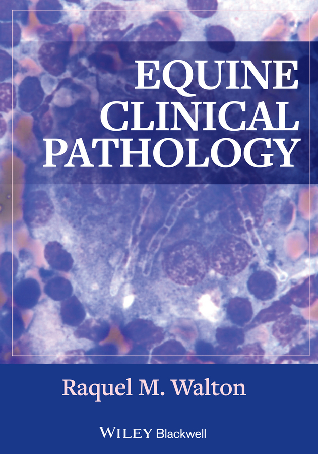 Фото - Raquel Walton M. Equine Clinical Pathology ISBN: 9781118491980 zajac anne m veterinary clinical parasitology isbn 9781118292037