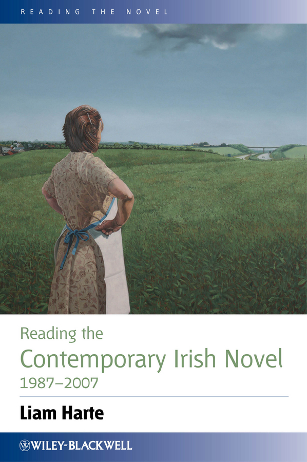 Liam  Harte Reading the Contemporary Irish Novel 1987-2007 thematic concerns in the novels of bapsi sidhwa