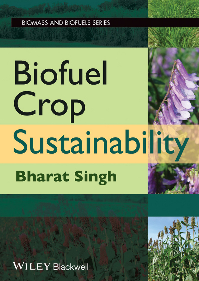 Bharat Singh Biofuel Crop Sustainability sustainable production of carbazol derivative