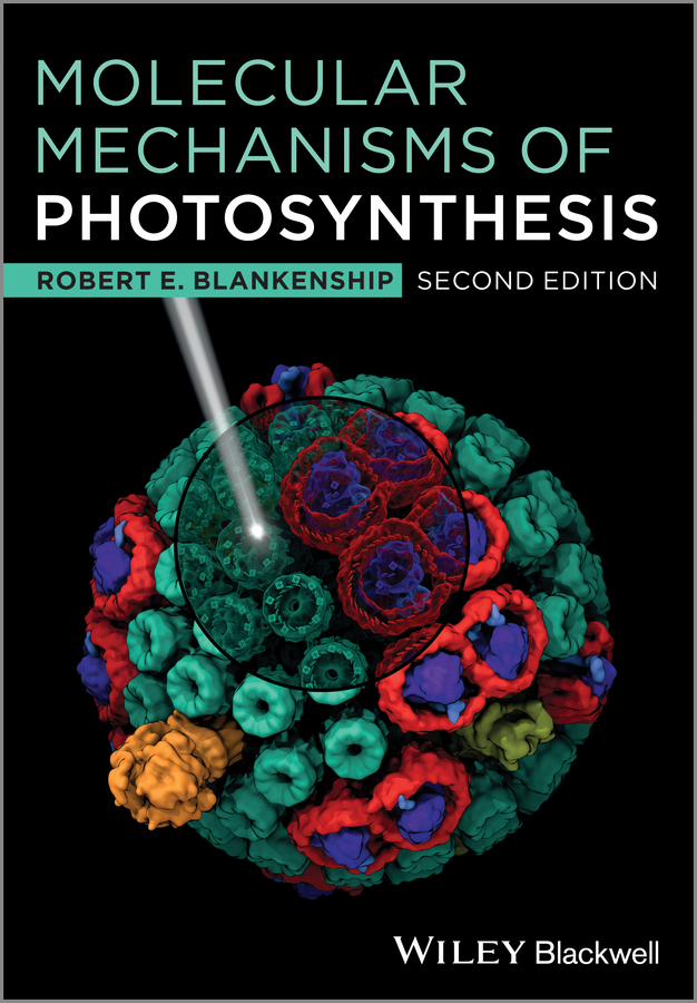 Robert Blankenship E. Molecular Mechanisms of Photosynthesis все цены