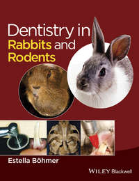 Estella B?hmer - Dentistry in Rabbits and Rodents