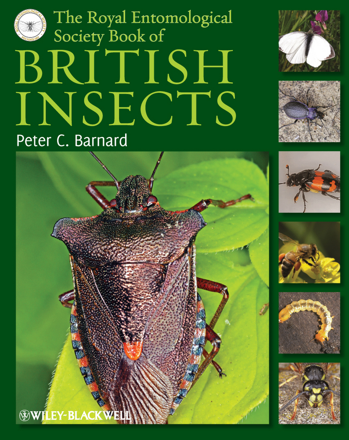 Peter Barnard C. The Royal Entomological Society Book of British Insects ang 55 жикле ангелы хранители дома 18х24