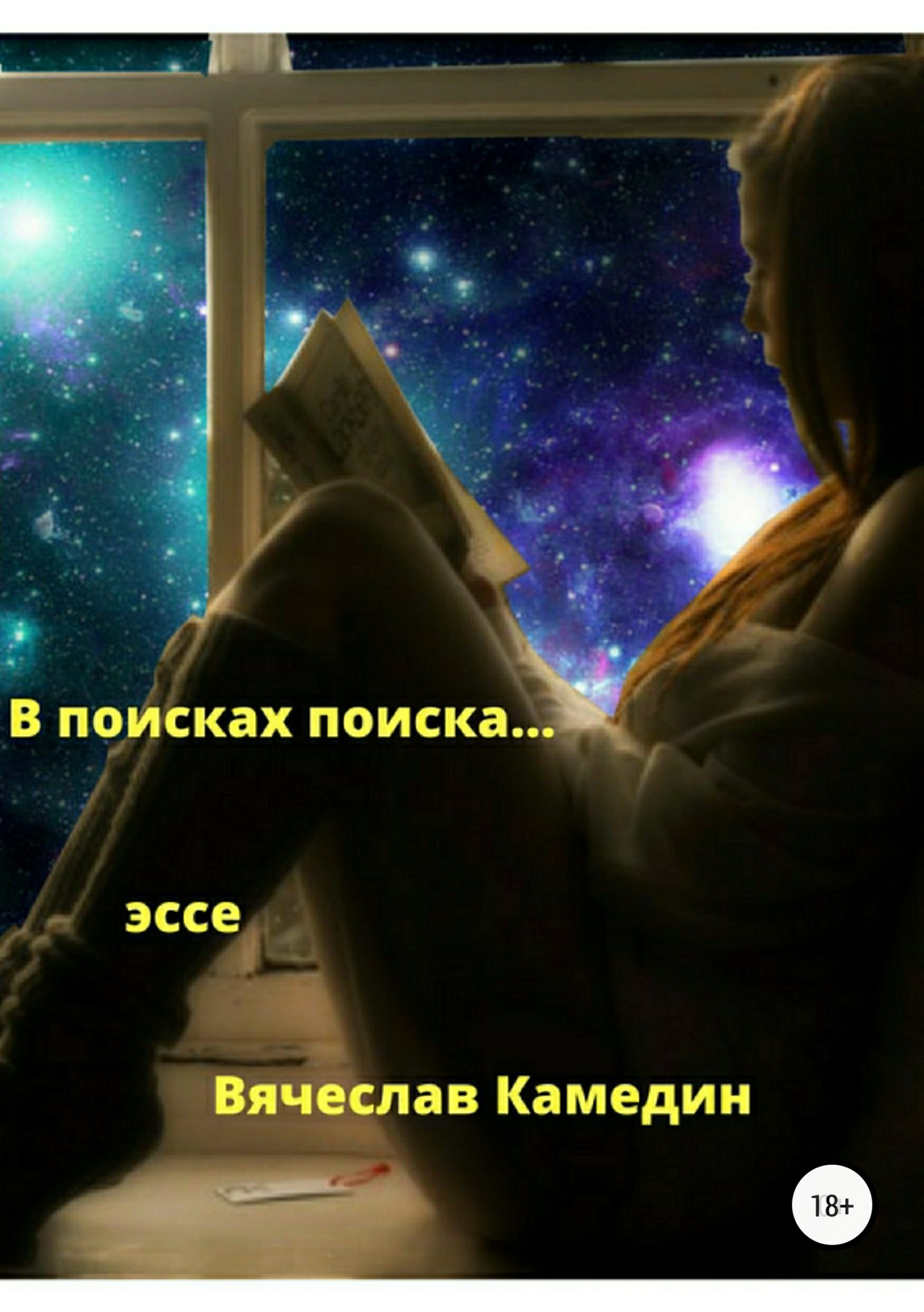 Вячеслав Владимирович Камедин. В поиске поиска
