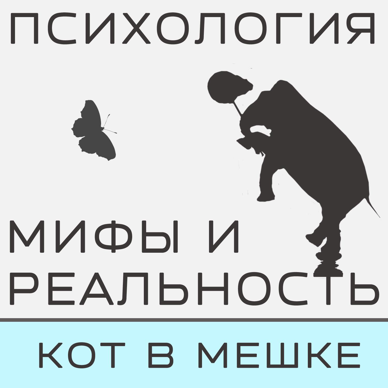 Александра Копецкая (Иванова) Кот в мешке! александра копецкая иванова кот в мешке с пб