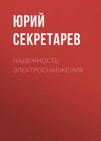 Юрий Секретарев - Надежность электроснабжения