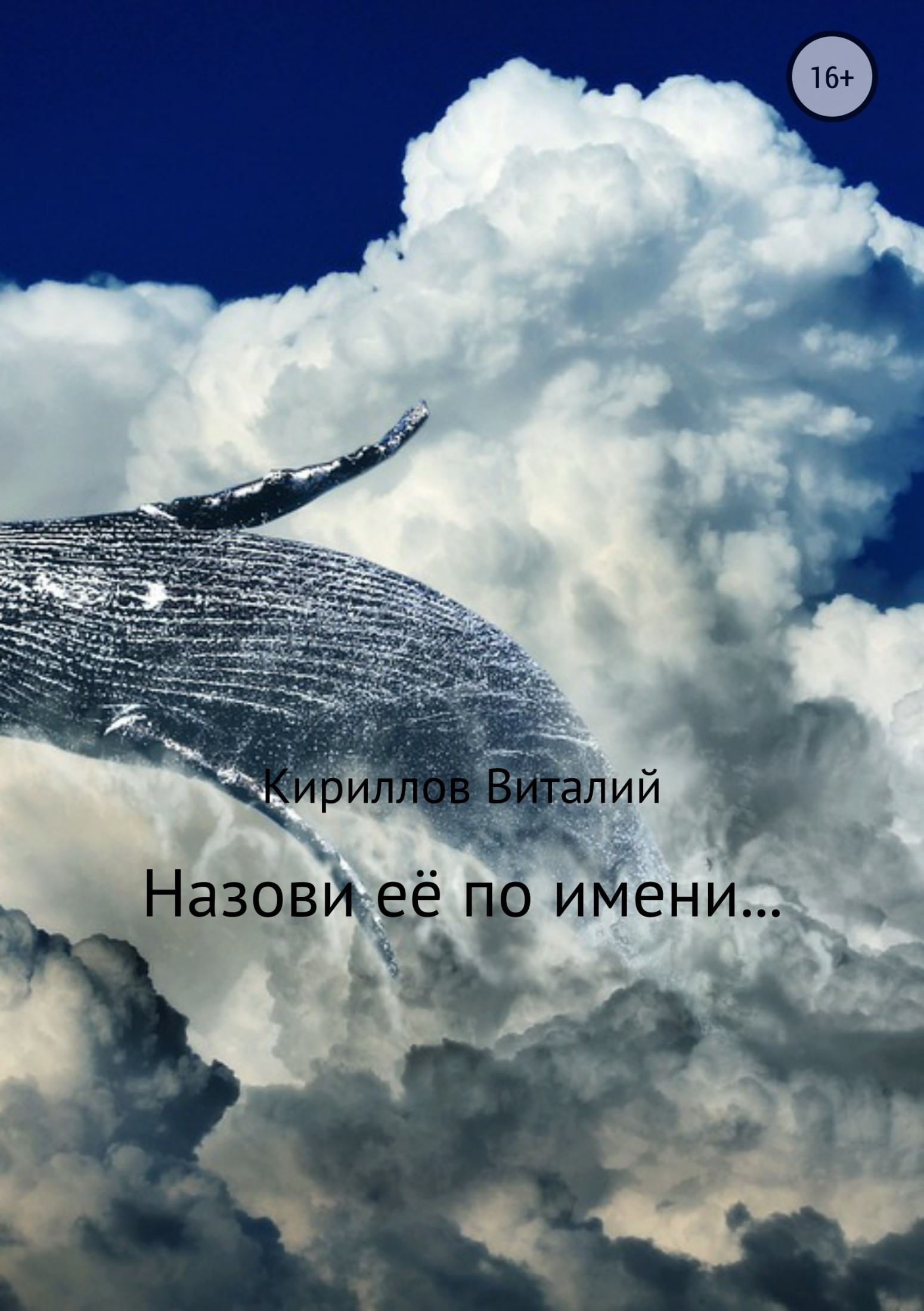 Виталий Александрович Кириллов Назови её по имени…