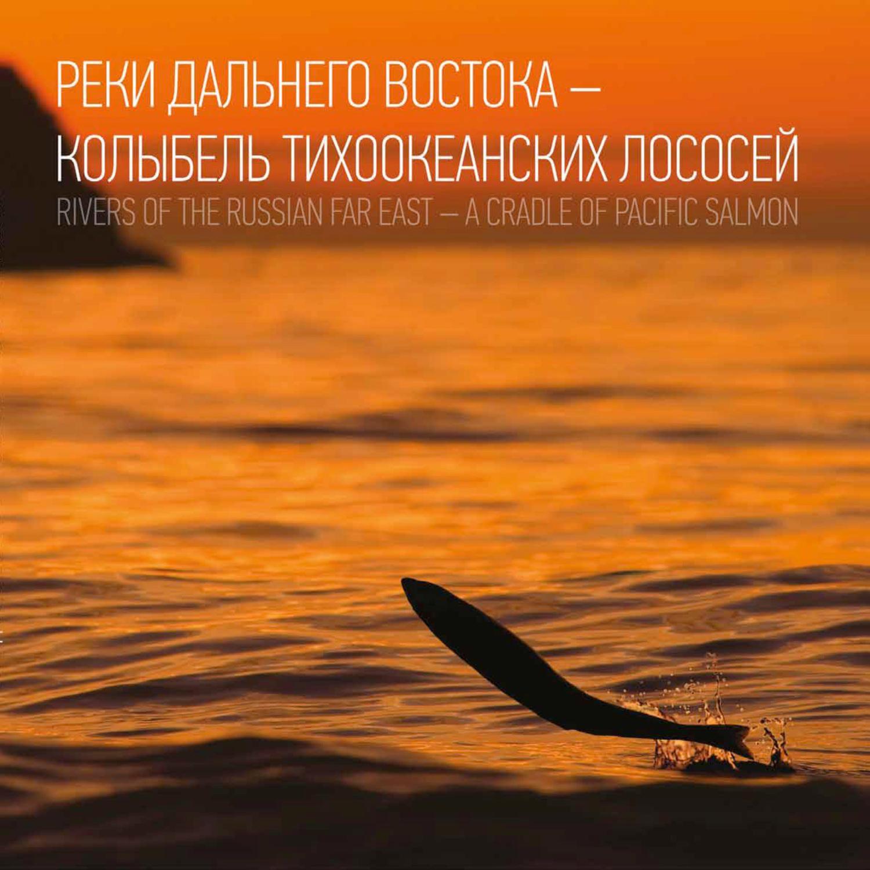Наталья Островская бесплатно