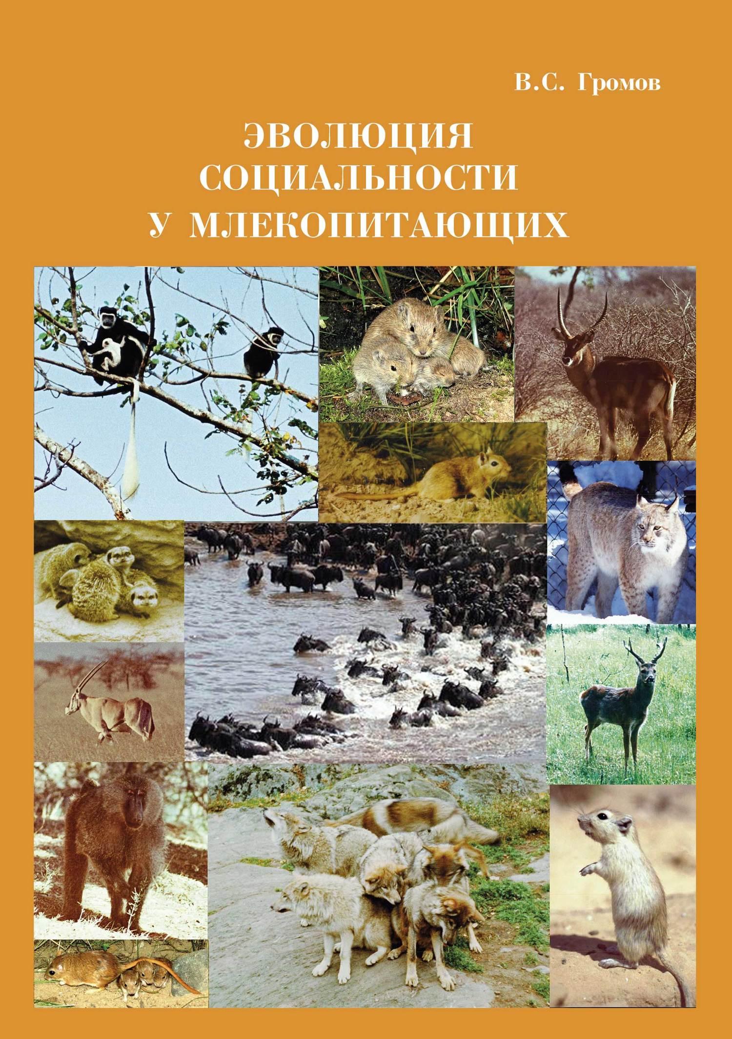 В. С. Громов Эволюция социальности у млекопитающих а н гилёв асимметрия использования конечностей у млекопитающих