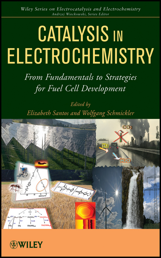 Schmickler Wolfgang Catalysis in Electrochemistry. From Fundamental Aspects to Strategies for Fuel Cell Development