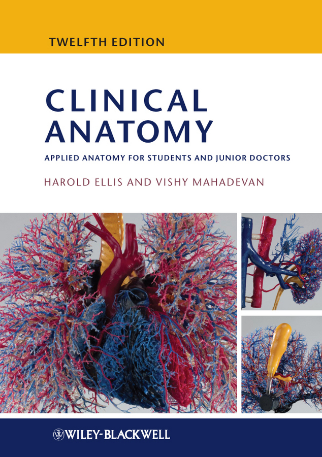 Ellis Harold Clinical Anatomy. Applied Anatomy for Students and Junior Doctors human anatomical anatomy hand medical model nerve blood vessel divided