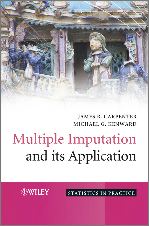 Carpenter James Multiple Imputation and its Application learning mathematics from comparing multiple examples