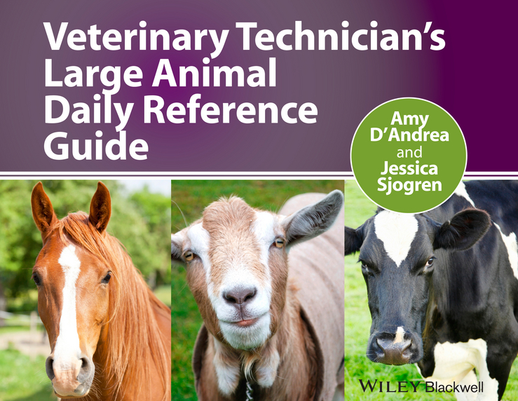 Фото - D'Andrea Amy Veterinary Technician's Large Animal Daily Reference Guide ISBN: 9781118694886 zajac anne m veterinary clinical parasitology isbn 9781118292037
