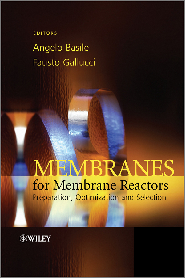 Gallucci Fausto Membranes for Membrane Reactors. Preparation, Optimization and Selection
