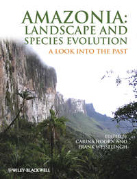 Wesselingh Frank - Amazonia, Landscape and Species Evolution. A Look into the Past