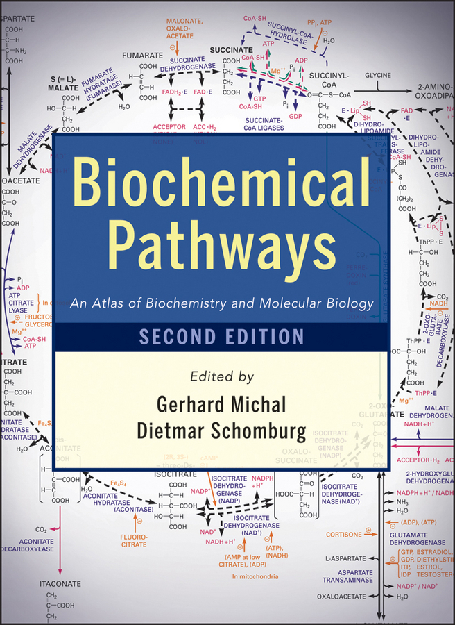 Schomburg Dietmar Biochemical Pathways. An Atlas of Biochemistry and Molecular Biology prevalance of metabolic syndrome in baghdad
