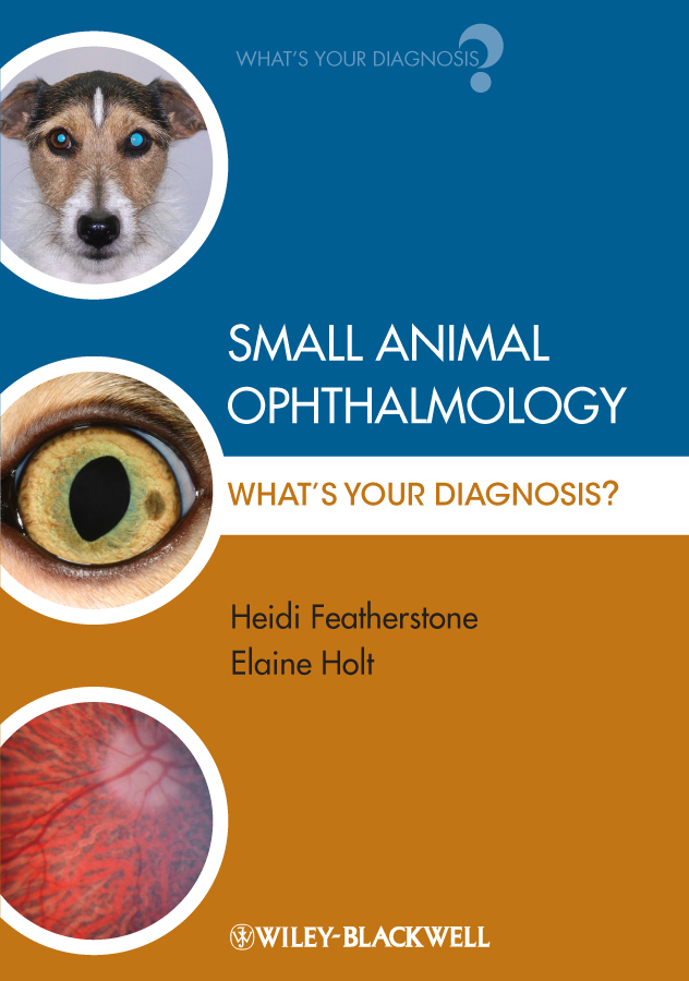 Featherstone Heidi Small Animal Ophthalmology. What's Your Diagnosis? ISBN: 9781444340013 zajac anne m veterinary clinical parasitology isbn 9781118292037