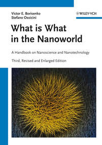 Ossicini Stefano - What is What in the Nanoworld. A Handbook on Nanoscience and Nanotechnology