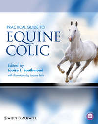 Fehr Joanne - Practical Guide to Equine Colic