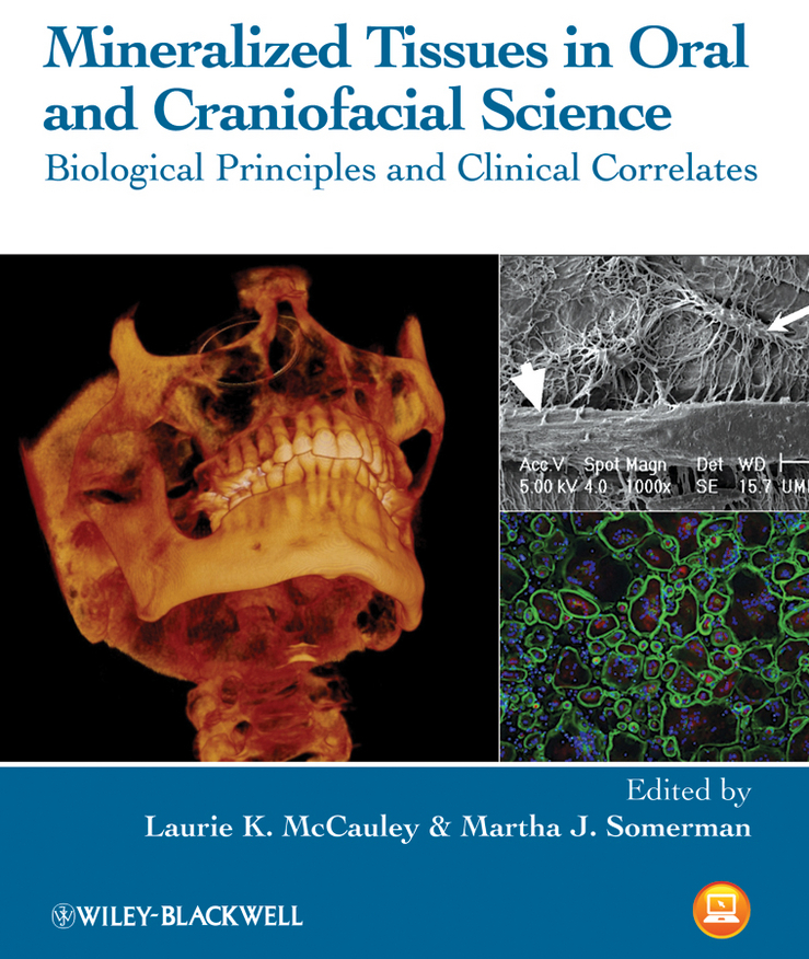 Somerman Martha J. Mineralized Tissues in Oral and Craniofacial Science. Biological Principles and Clinical Correlates цена