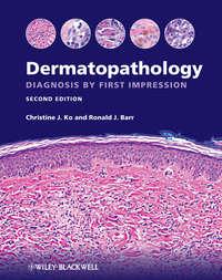 Ko Christine J. - Dermatopathology. Diagnosis by First Impression