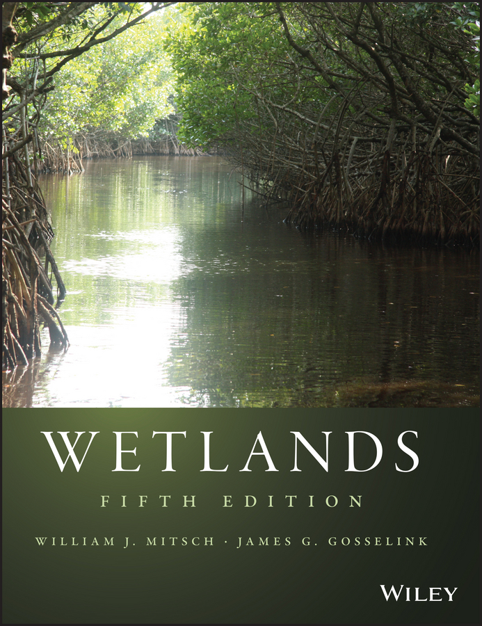 Mitsch William J. Wetlands constructed wetlands for hydrocarbon removal