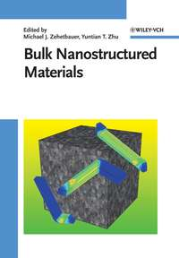 Zehetbauer Michael J. - Bulk Nanostructured Materials
