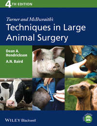 Hendrickson Dean A. - Turner and McIlwraith's Techniques in Large Animal Surgery