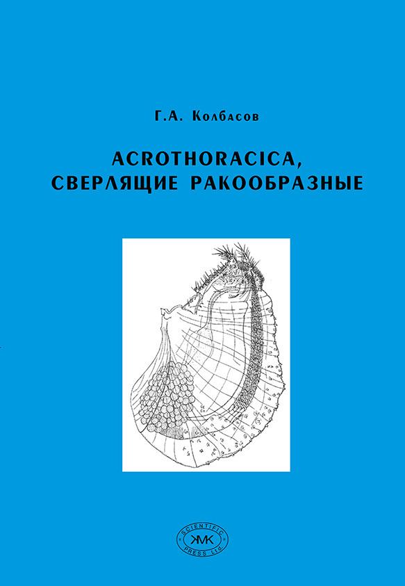 Acrothoracica,
