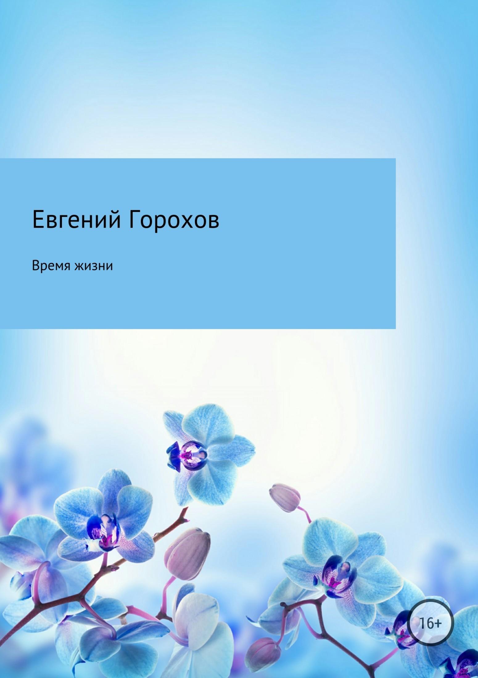 Евгений Горохов - Время жизни