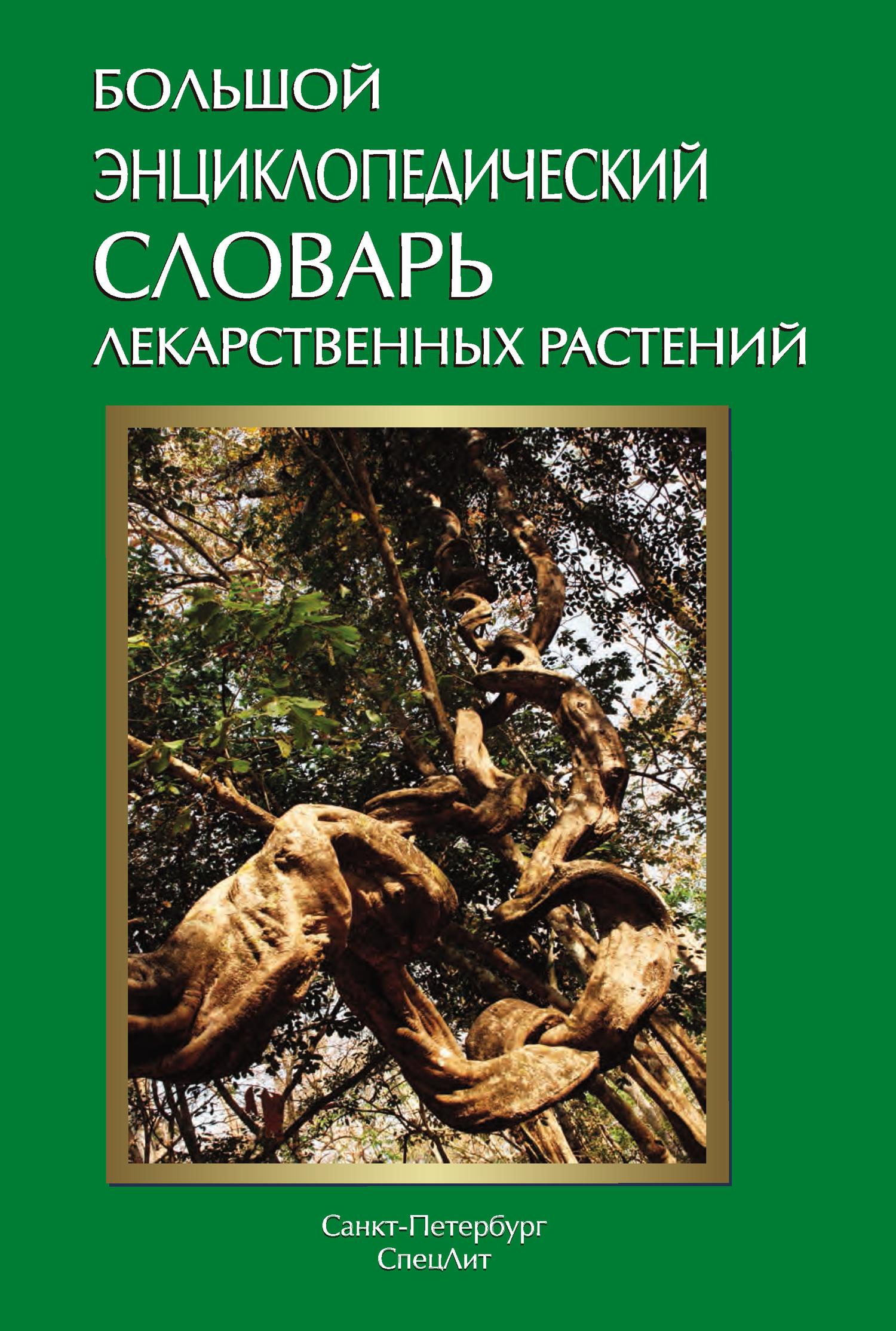 Коллектив авторов Большой энциклопедический словарь лекарственных растений ISBN: 978-5-299-00528-8 цены онлайн