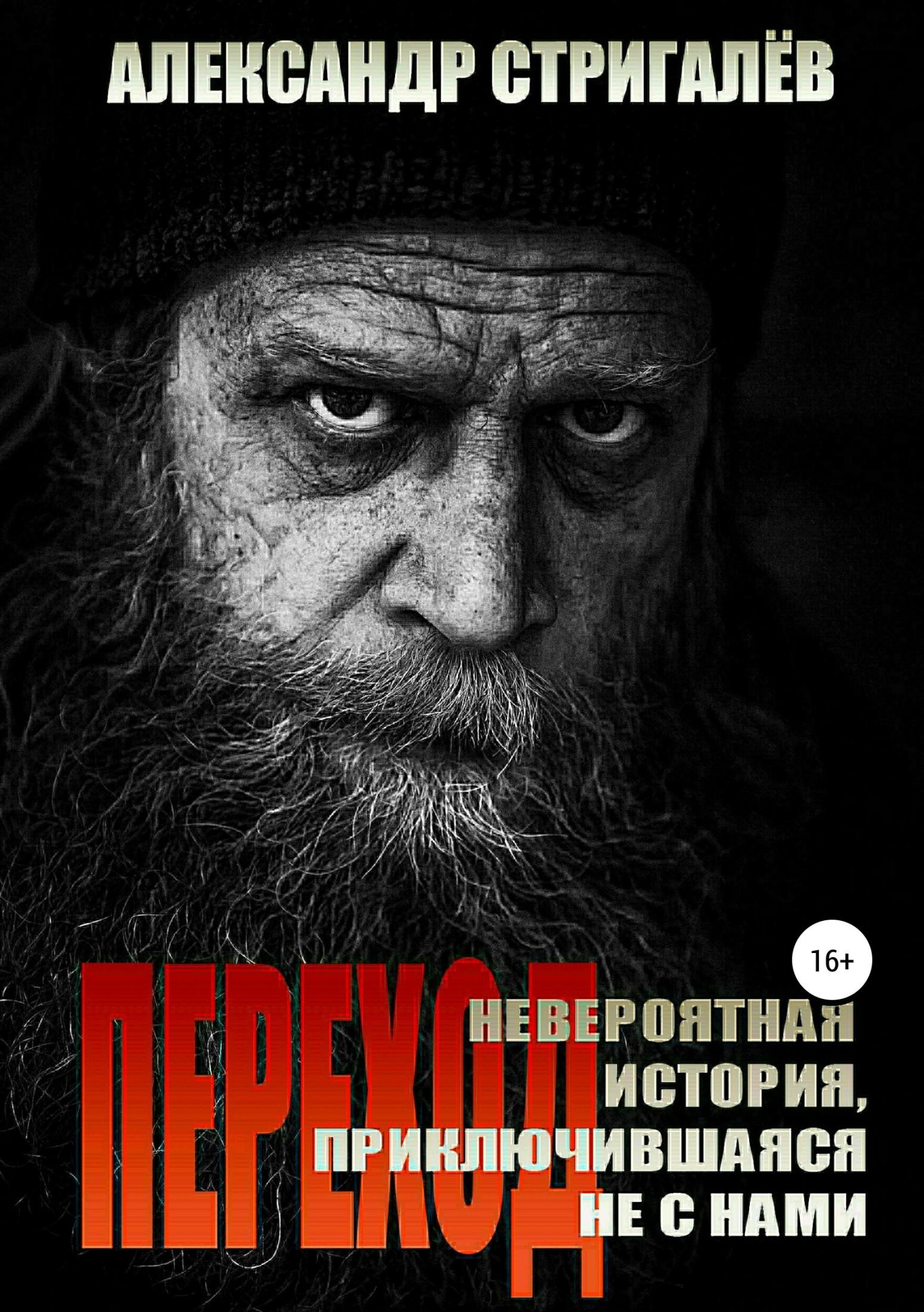 Александр Стригалёв - Переход. Невероятная история, приключившаяся не с нами