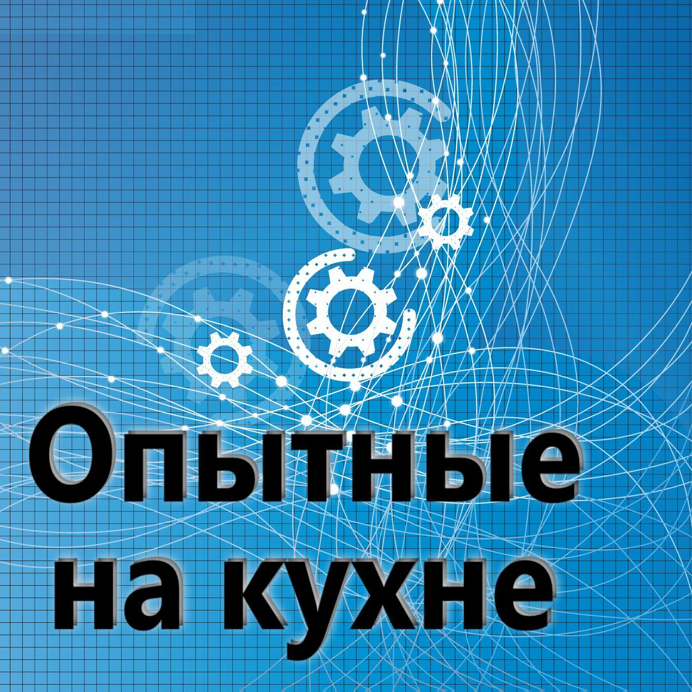 Евгений Плешивцев Опытные на кухне №019
