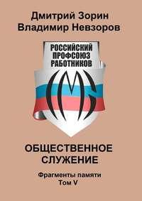 Дмитрий Зорин - Общественное служение. Фрагменты памяти. Том V