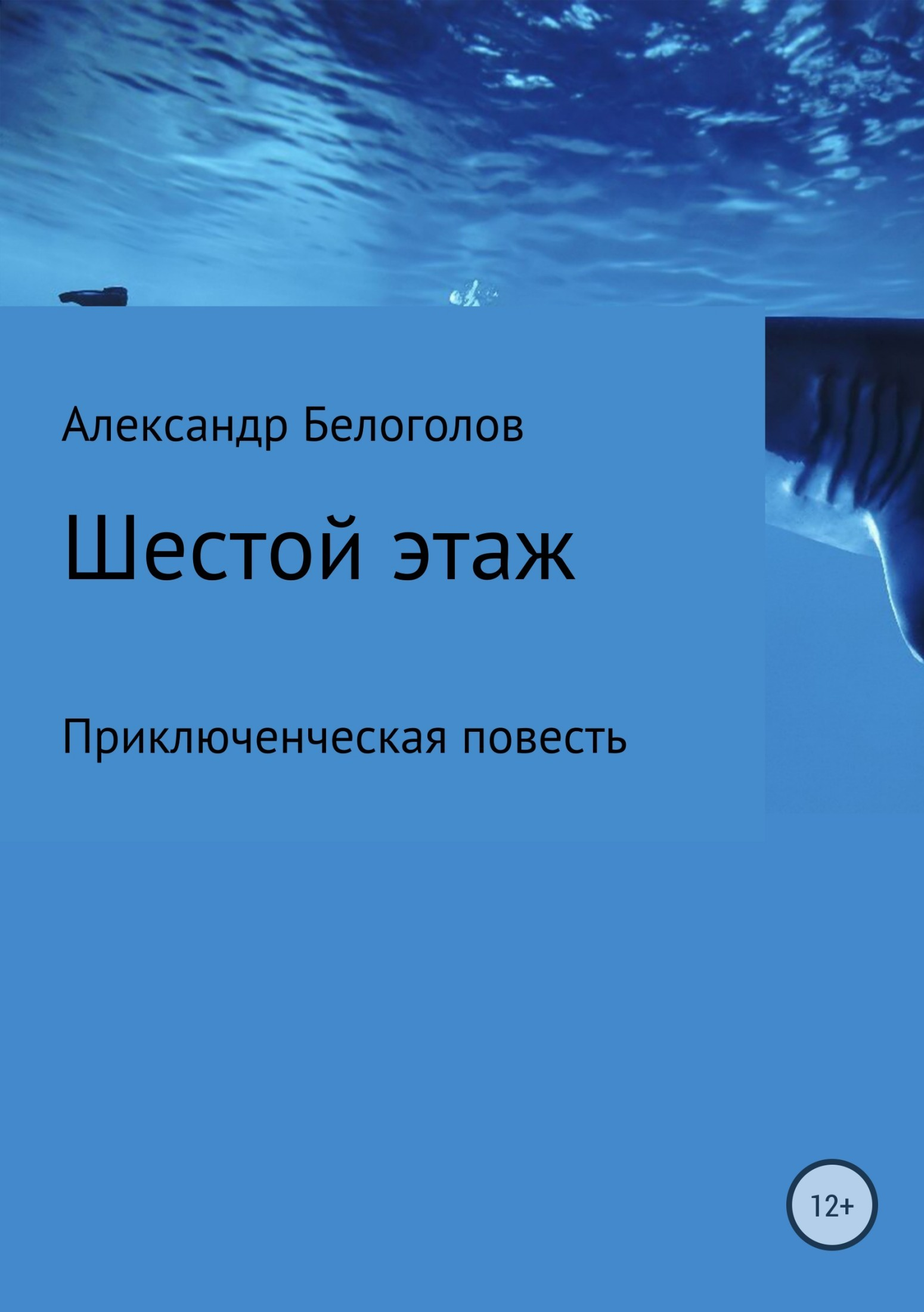 Александр Белоголов - Шестой этаж